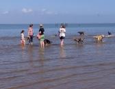 beach_walk_002